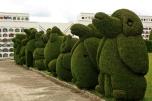 Osos, elefantes...