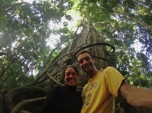Ceiba gigante