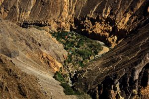 Oasis Cañon del Colca