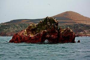 Isla Ballestas I