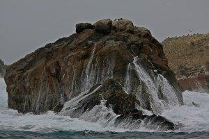 Isla Ballestas III