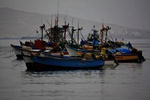 Barcos de pesca en Paracas