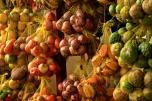 Frutas y Verduras en Leticia