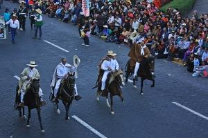 Caballos desfile Arequipa
