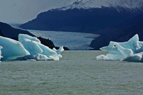 Laguna glaciar Grey 2