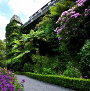 Jardin botanico Wellington