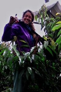 Ruth recogiendo cerezas