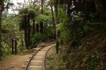 Karangahake reserve 2