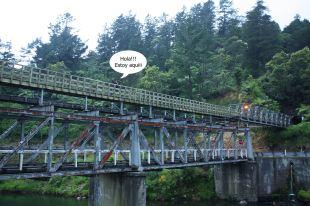 Puente ferroviario minero