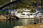 Pescando en el puerto de Picton