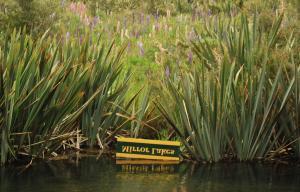 Mirror Lake New Zealad